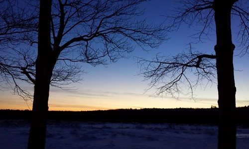 [322/365] Snowy Sunset