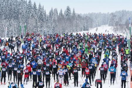 Šumavský skimaraton Kooperativy bude!