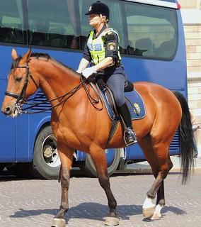 Riding police woman