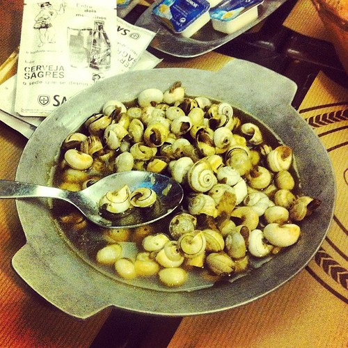 Caracóis, Portuguese snails: tiny, salty, garlicky and possibly thymey. A drinking snack available all over Lisbon. #portugal
