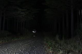 Ironman LED 30W light bars spot and flood