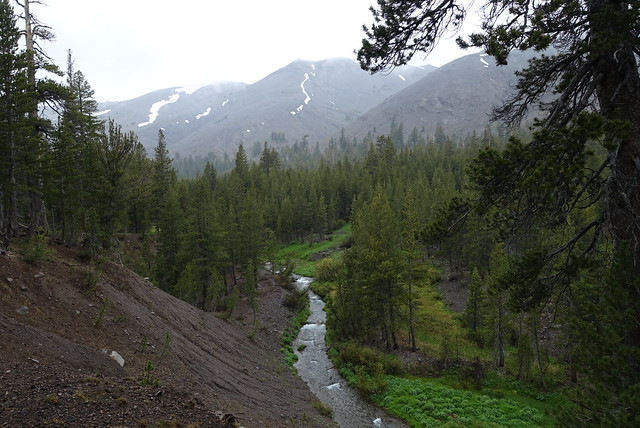 Walker River, m1005