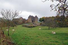 2016-10-24 10-30 Burgund 178 Berze-La-Ville - Photo of Péronne