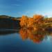 Autumn lake by Bayerwaldteam