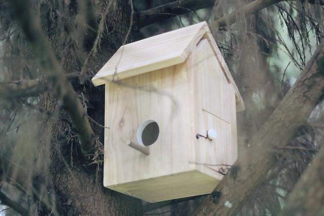Morrie & Oslo's Birdhouse