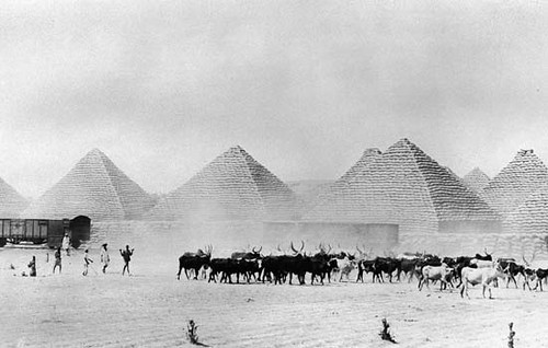 paticheri_groundnutpyramids (3)