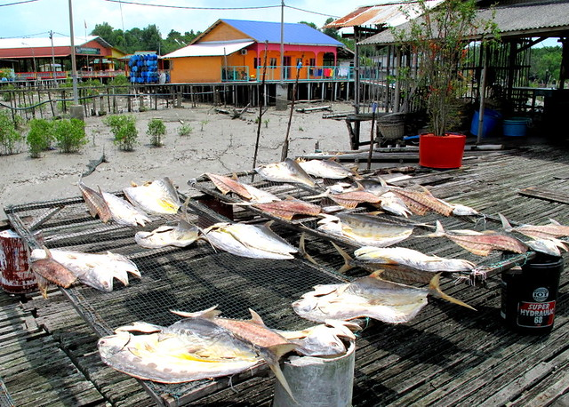 Pulau Ketam, Crab Island - drying salted fish