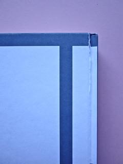 David Levithan, ogni giorno. Rizzoli 2013. Progetto grafico di copertina © Adam Abernethy. Quarta di copertina (part.), 1