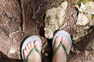 mojo-slippers.jpg