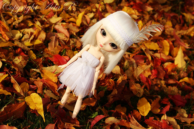 It´s autumn