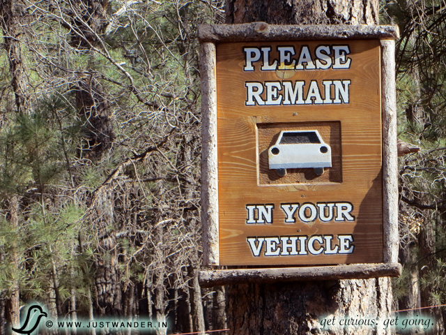 PIC: Warning signs you'll find at Bearizona Drive-thru Wildlife Park