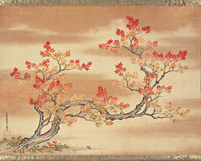 Tosa Mitsuoki - Painting of a maple tree in autumn (c.17th Century)