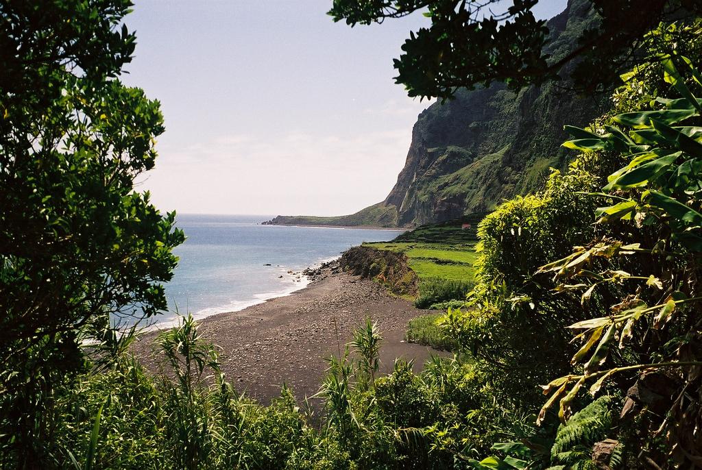 17. Rincón de la Isla de las Flores. Autor,