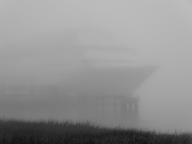 cruise ship in the fog
