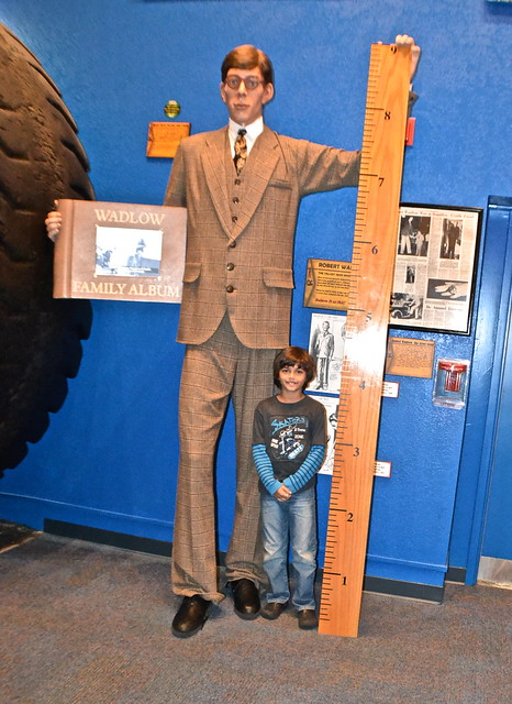 Ripley's Believe It or Not Orlando - tallest man in the world