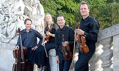 hadyn-quartett