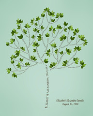 Family tree with names art sea green brown ancestry green leaves