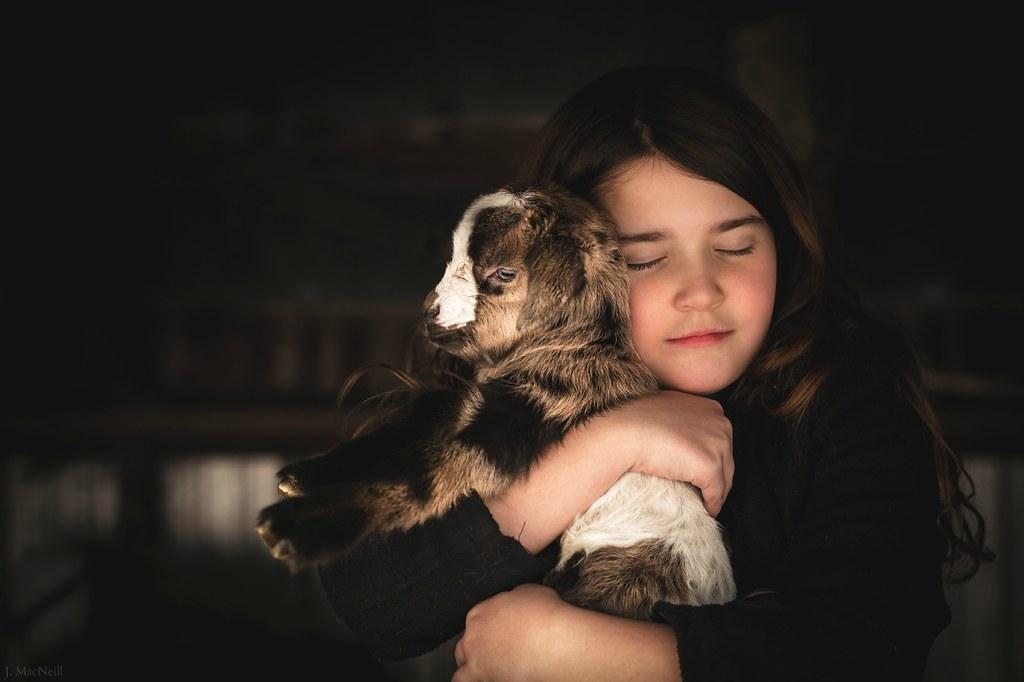 goat hug