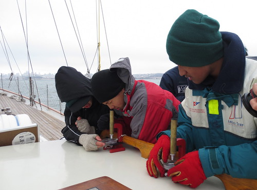 learning plankton ecology on Seaward