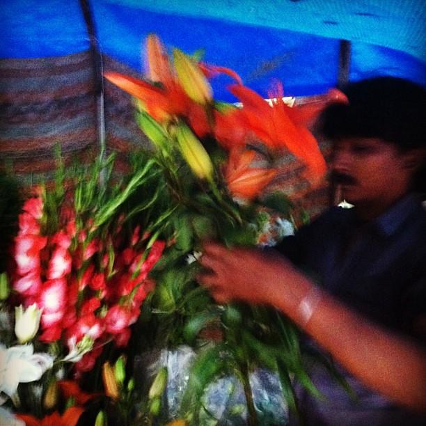 Buying flowers #monsoon #india #delhi
