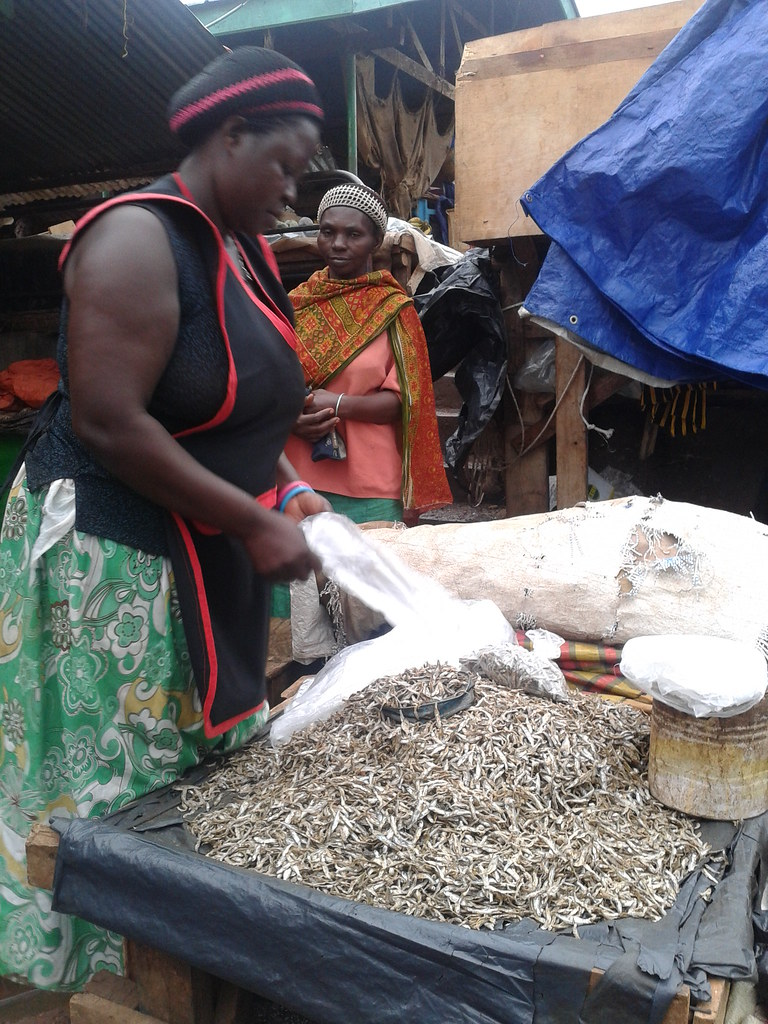 Retailer of small dried fish in Nakagwa Market, Kampala, Uganda