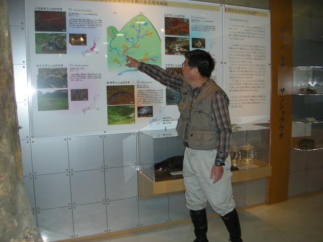 初めに自然館のサンショウウオコーナーにて,内藤先生の説明を聞く.