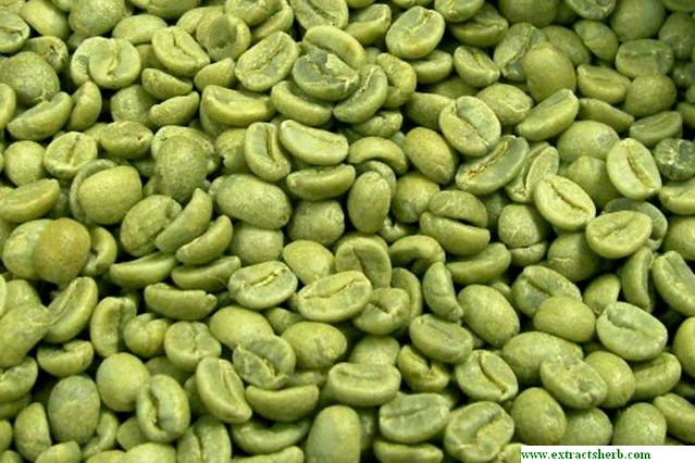 green-coffee-bean extract http://www.extractsherb.com/568-kosher-natural-pure-green-coffee-bean-extract-.html