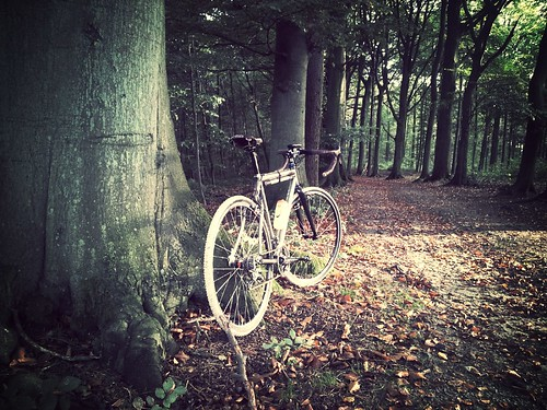 Moots Psychlo - X on a forest road.