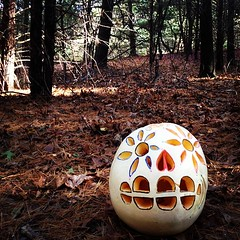 Look what I found in the woods: trails-side present. #halloween#run#treats