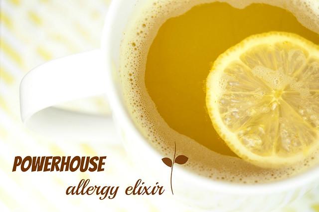 powerhouise allergy elixir in_the_know_mom