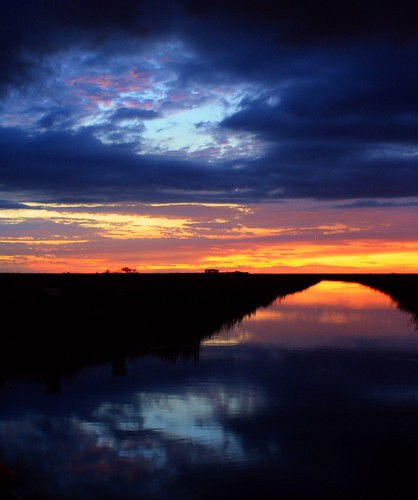 sunset reflection nature beauty birds clouds landscape unitedstates florida hometown dramatic naturallight everglades drama inland dike cloudscape wetland floridaeverglades alligators southflorida afterglow sawgrass browardcounty riverscape riverlight riverofgrass wng busysky coralspringsflorida dmslair riverwithinariver quartasunset194