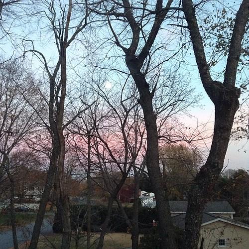 November moon rise