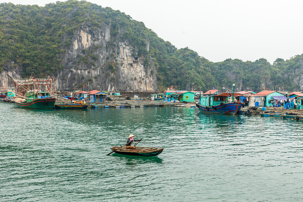 Floating fisherman's village near Ben Beo, Cat Ba.