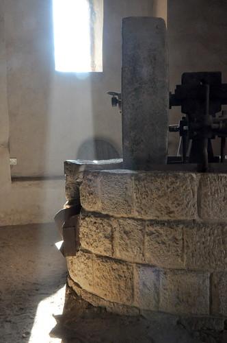 Olive oil press by olegsverdlov