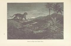 Image taken from page 271 of 'Le Désert et le Monde Sauvage ... Illustrations par Yan' D'argent, etc'