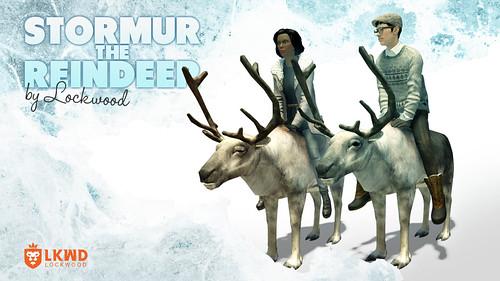 nDreams_Reindeer_LMO