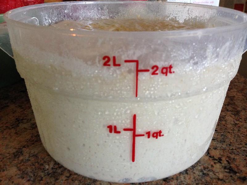 Dough after the bulk fermentation