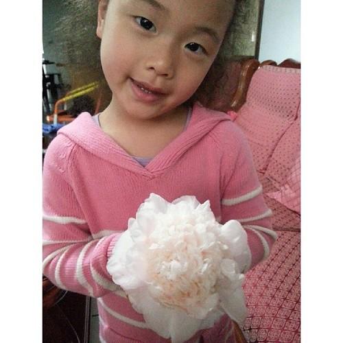 20140130 婆婆的茶花(水晶) 超美的 一朵就像一把捧花了  #過年 #我親愛的婆婆