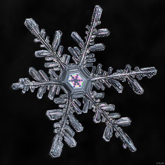 Snowflake: Vibrant Core