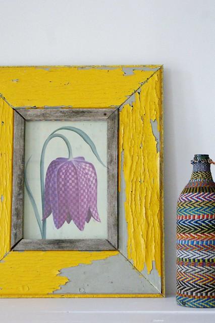 framed fritillaria