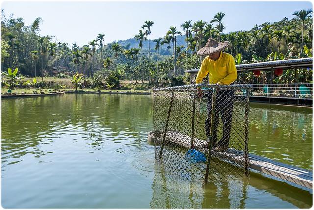 後壁林休閒農場-魚塘-南投釣魚-日月潭釣魚