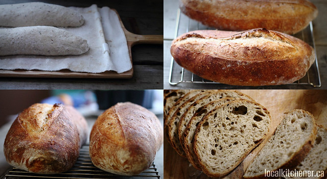 A bread to win collage