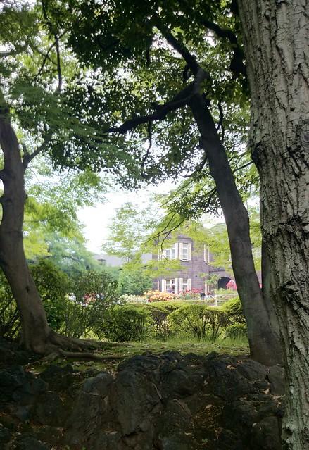 Kyu-Furukawa Garden