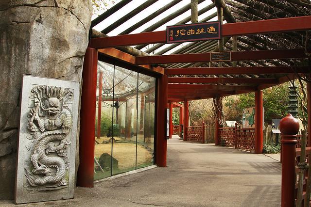 China Memphis Zoo