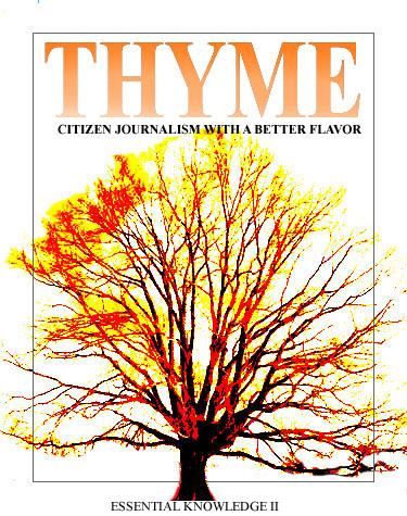 THYME0725