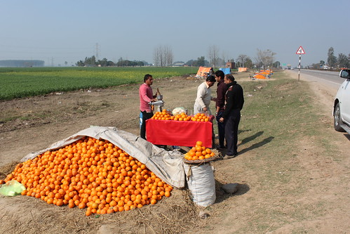 IMG_9426-orange-juice-vendor