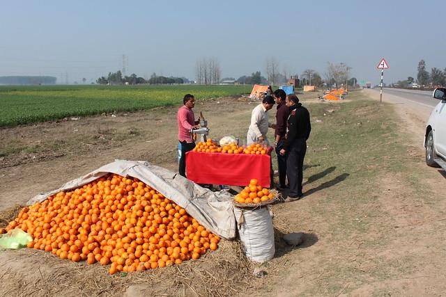 IMG_9426-orange-juice-vendor