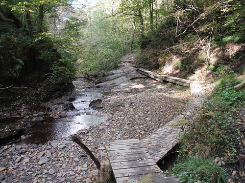Boardwalk to side of another waterfall on the Nant Llech