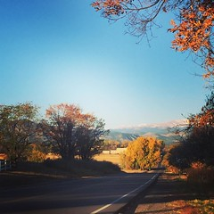 Arapahoe Road, Lafayette, CO 297/365 #lafayetteco #lafayettecolorado #colorado #mountains #road #driving #fall #autumn #drivingaround #project365 #365