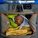 Precious cargo. by koperajoe